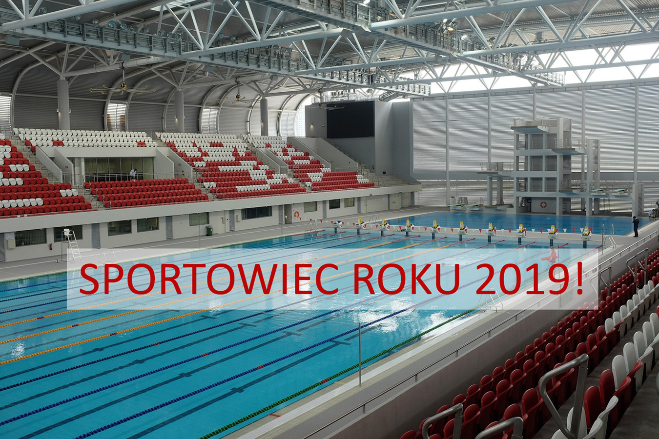 olympic-swimming-pool-1185774_1920